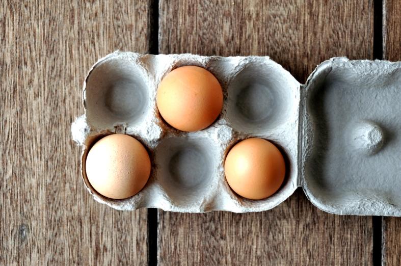 FC&G_eggs_1