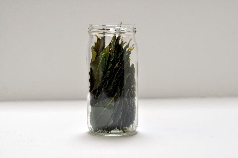 FCG_bay_leaves_in_jar