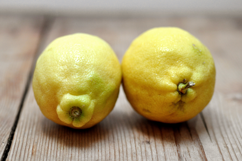 FCG_lemons_closeup