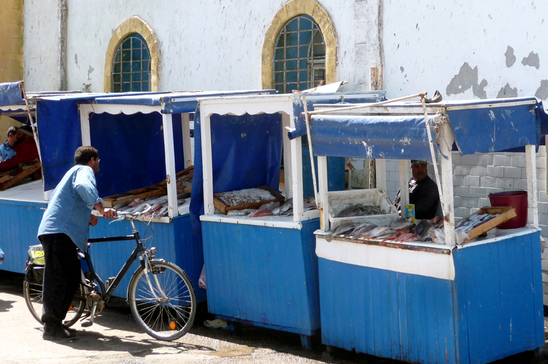 FCG_essaouira_fish_market_bike